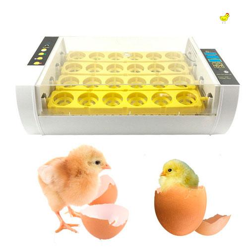 Incubadoras para huevos